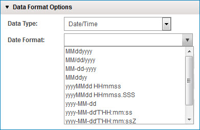 Date/Time data type